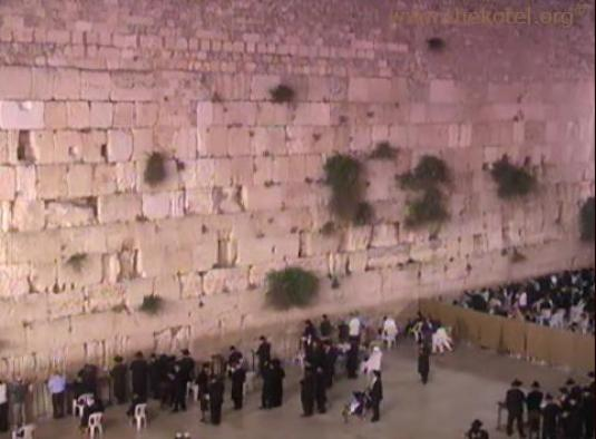 Live Western Wall Kotel streaming webcam Jerusalem