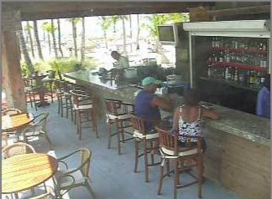 LIVE Streaming Aruba Bar Webcam Radisson Hotel, Aruba