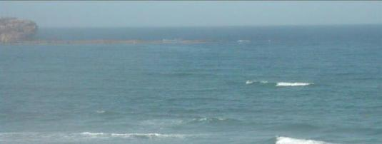 Curl Curl Beach Live Streaming Surfing Weather Cam Sydney