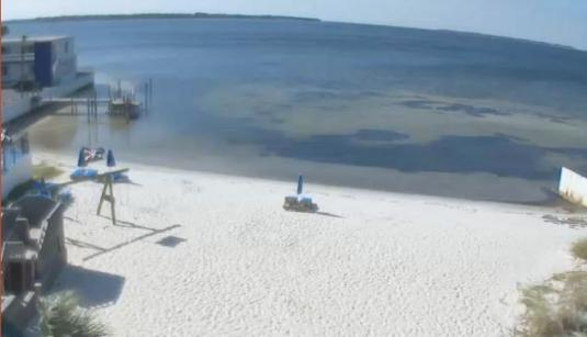 Panama City Live St. Andrews Bay Beach Weather Web Cam Florida