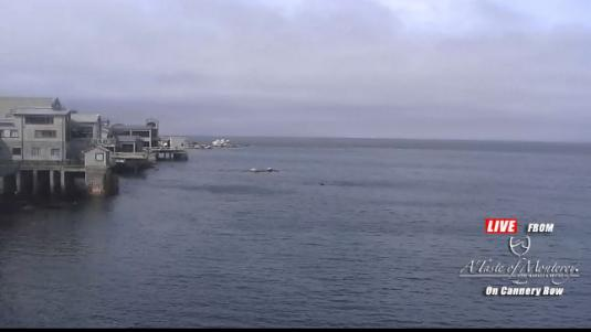 Cannery Row Live Monterey Bay Panorama Weather Web Cam Monterey California